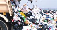 В Омской области негде выделить участок под легальный полигон отходов