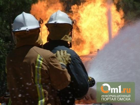В Омской области из горящего дома спасли мать и 12-летнюю дочь