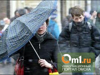 Омские синоптики в +25 прогнозируют мокрый снег и первые весенние грозы