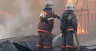 Сразу двое омичей погибли на пожарах в дачных домиках
