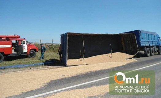 В Омской области на дорогу опрокинулся прицеп с зерном