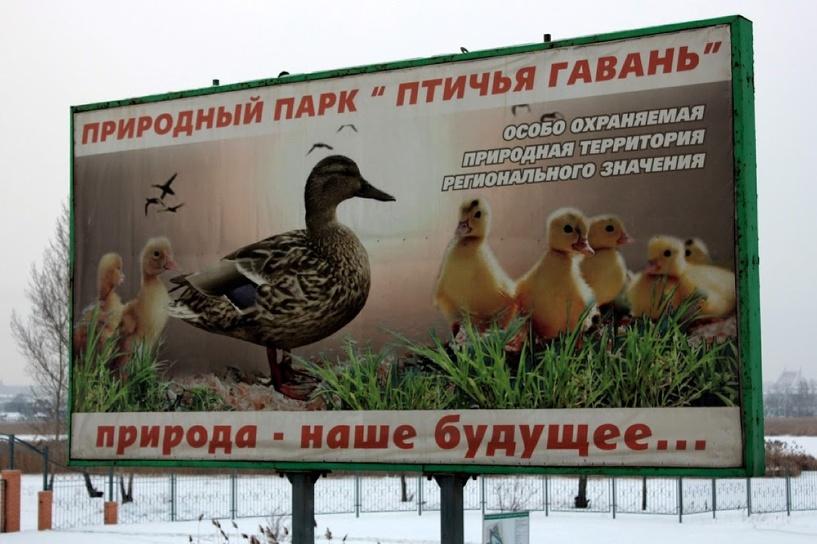 В Омской «Птичьей гавани» готовят общежитие для перелетных птиц