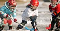 В Омске судить турнир по хоккею будет Дед Мороз
