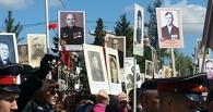 Фотографии могут сказать больше слов: Победный парад и Бессмертный полк