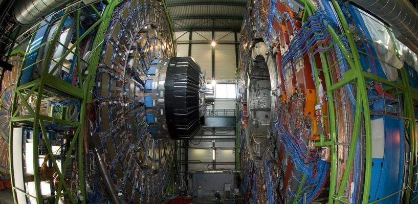 Хорек вывел из строя большой адронный коллайдер, запущенный после двухлетнего простоя