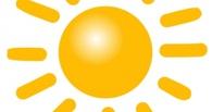 Новым логотипом Омской области предложили сделать солнышко