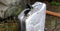 В Омской области два мальчика пострадали из-за подожженного бензина