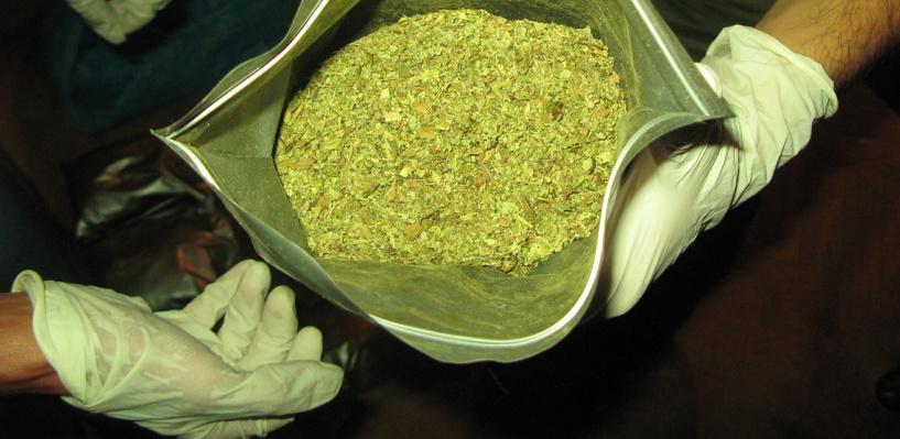 В Омской области задержали двух дилеров с сотнями доз наркотиков