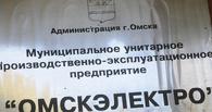 Депутаты Горсовета выбрали новый состав директоров «Омскэлектро»