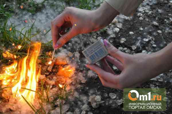 МЧС призывает юных омичей не поджигать тополиный пух