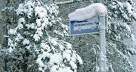 До дрожи: как работают теплые остановки в России и как будут работать в Омске