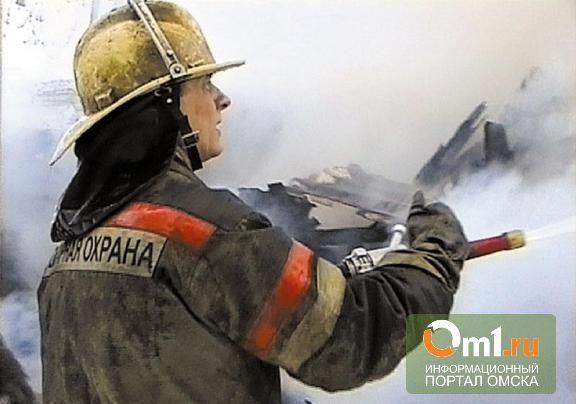В Омске за выходные двое мужчин обгорели при попытке потушить пожар