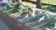 В Омске в День памяти и скорби выпустят в небо белых журавлей