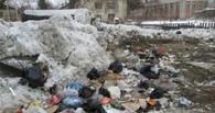 В Омске ликвидировали 6 несанкционированных свалок