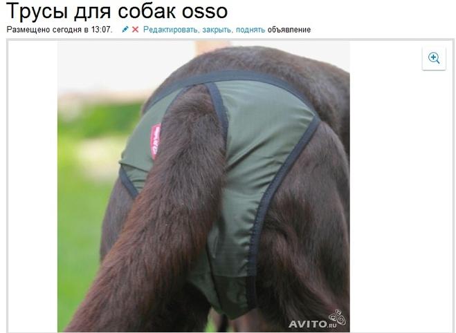 джинсовые бренды в россии