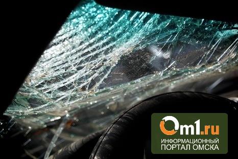 В Муромцевском районе водитель отвлекся от управления и погиб в кювете