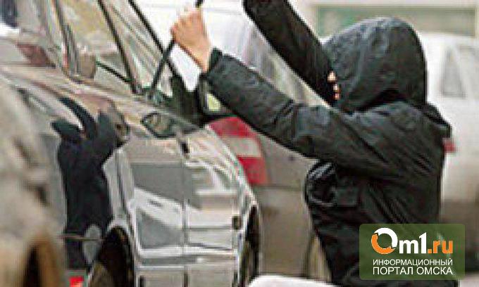 Молодой алтаец, угнав чужое авто, прятался от полиции в Омской области