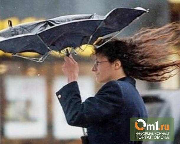 Омские спасатели ждут урагана