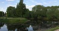 В Омске застраивают «Лебединое озеро»