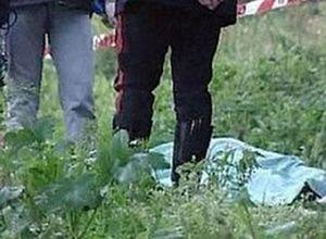 В Омской области в лесополосе найдено тело 6-летней девочки