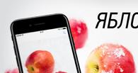 Выиграйте iPhone 7 или iPhone SE, участвуя в супер-акции с «Дебетовой Картой года!»