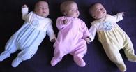 В Омске родилась первая в 2015 году тройня
