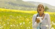 В Омской области продавали поддельные лекарства от аллергии