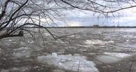 Сотрудники МЧС спасают Исилькуль от паводка