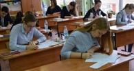 Во время карантина омские старшеклассники напишут итоговое сочинение
