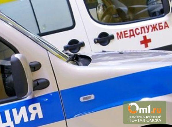 В Омской области грузовая «Газель» насмерть сбила пешехода