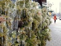 В Краснодаре устраняют последствия ледяного дождя