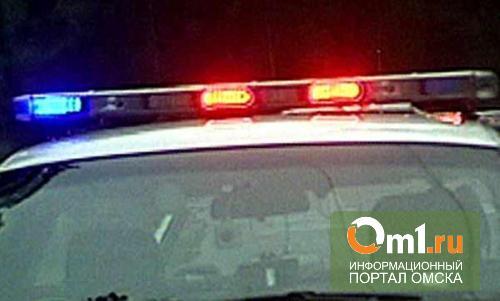 В Омской области водитель сбил пешехода насмерть и повесился