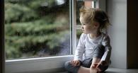 В Омской области дети стали чаще падать из окон из-за москитной сетки
