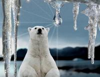 С 2015 года в Северном полушарии Земли начнется похолодание климата