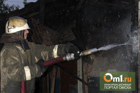 В Нижнеомском районе на пожаре в частном доме погибла мать с двумя детьми