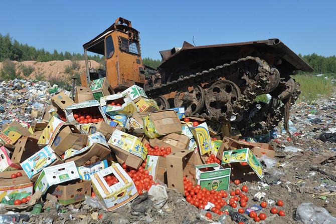 Омичи могут помочь разработать правила уничтожения санкционных продуктов
