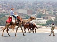 Туроператоры не хотят возвращать россиянам деньги за Египет без суда