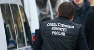 В Омске арестована руководитель благотворительного фонда Алена Бабий