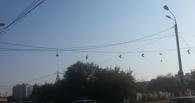 В Омске территорию Московки-2 пометили кроссовками на проводах