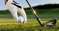 Омские школьники смогут играть в гольф на уроках физкультуры