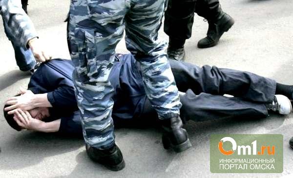 Омские полицейские опровергли обвинения в избиении человека