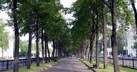 В центре Омска восстановят еще один сквер