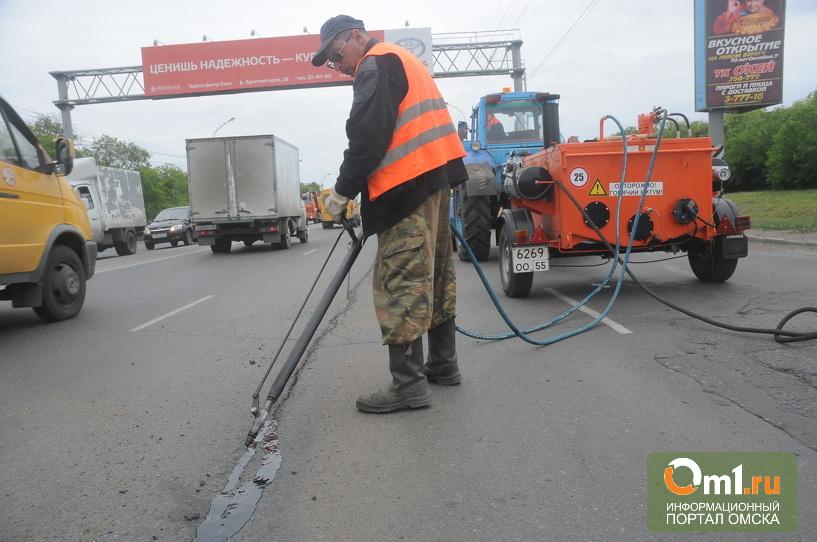 Мэрия Омска закупила технику для ямочного ремонта дорог
