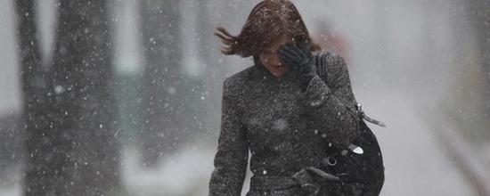 В Омской области в женский день без вести пропала женщина