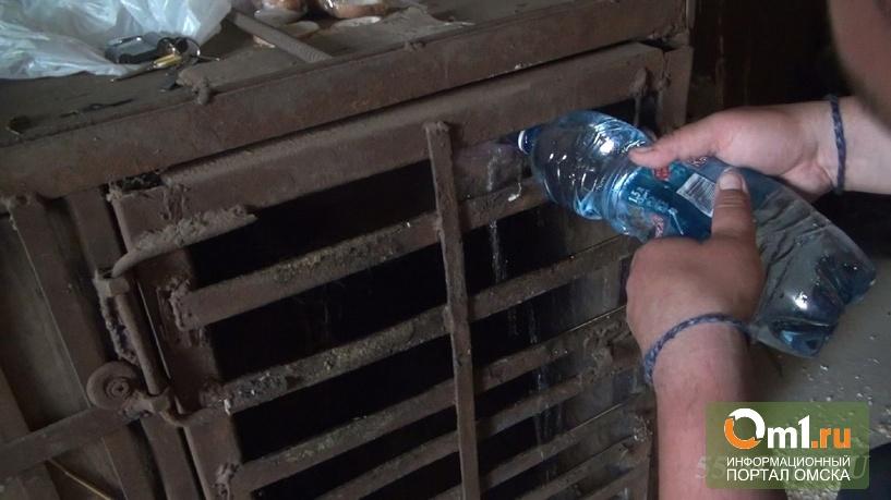Жилищные условия медведицы, расположившейся в омском гараже, признали удовлетворительными