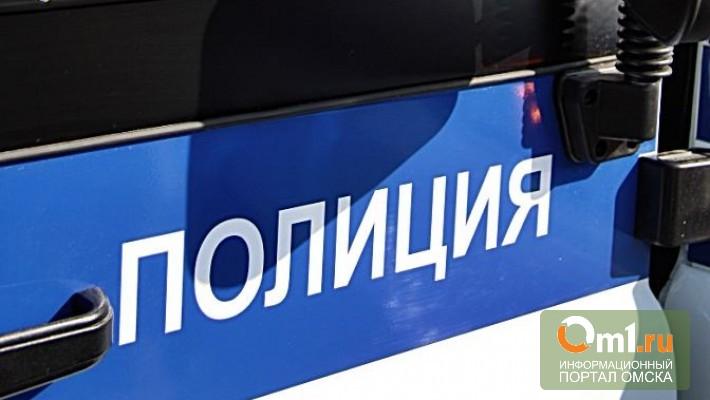В Омске на пешеходном переходе сбили девочку и ее маму