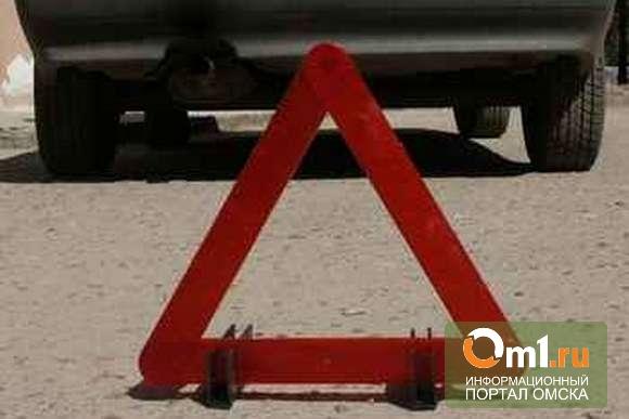 ДТП в Черлакском районе: водитель погиб из-за того, что выскочил на встречку