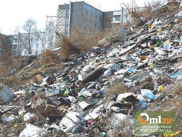 В Омске из частного сектора в Ленинском округе вывезли 50 тонн мусора
