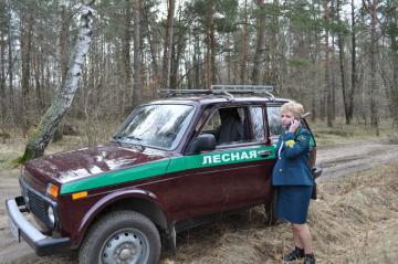 В лесах Омской области будут дежурить специальные инспекторы