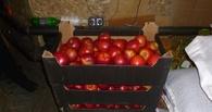 В Омске уничтожили больше двух тонн яблок, капусты и груш
